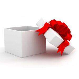 Sponsor a Christmas Gift Bag1
